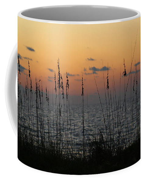 Sky Coffee Mug featuring the photograph Sailors Delight by Jean Haynes