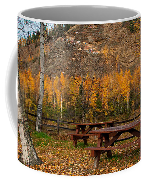 Alaska Coffee Mug featuring the photograph Salcha River Recreation Area by Cathy Mahnke