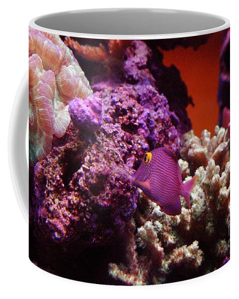 Clay Coffee Mug featuring the photograph Salt Water Aquarium by Clayton Bruster