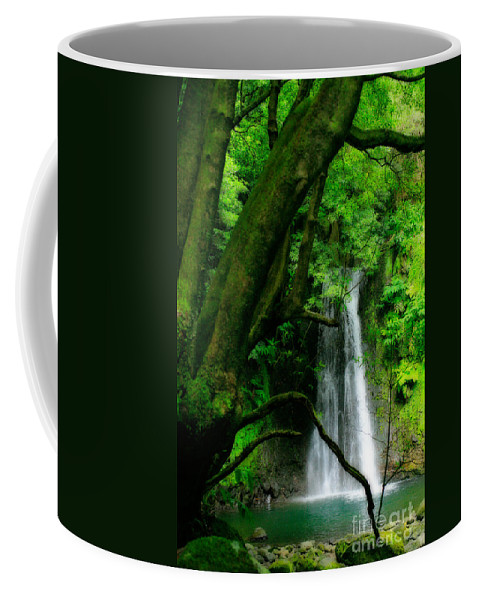 Environment Coffee Mug featuring the photograph Salto Do Prego Waterfall by Gaspar Avila