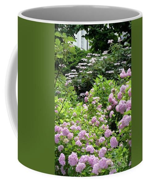 Austria Coffee Mug featuring the photograph Pink Hydrangeas In Mirabell Garden by Carol Groenen