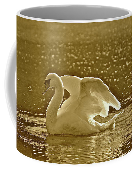 Swan Coffee Mug featuring the photograph Sam by Diana Hatcher