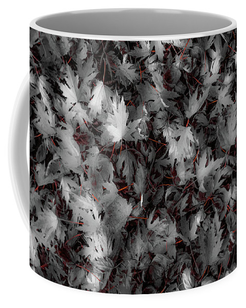 Leaves Autumn Fall Life Death Inbetween Coffee Mug featuring the photograph Samhain by Justin K Meshew