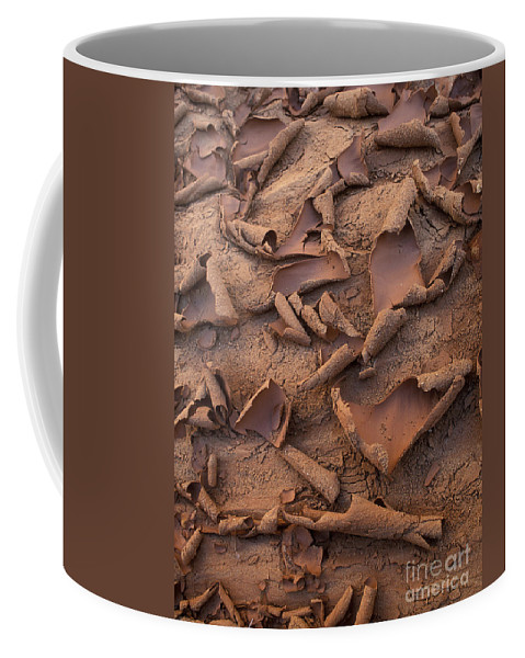 Capitol Reef Coffee Mug featuring the photograph Sand And Mud Curls by Sandra Bronstein