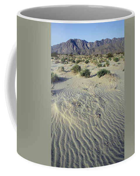 Deserts Coffee Mug featuring the photograph Sand Dunes And San Ysidro Mountains by Rich Reid