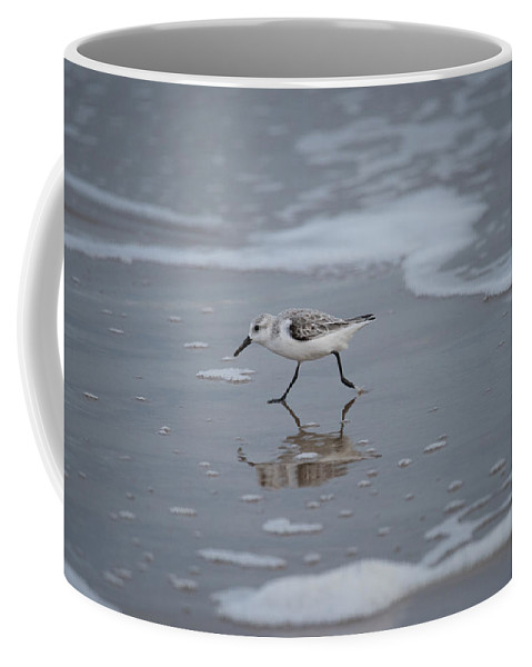 South Padre Island Coffee Mug featuring the photograph Sanderling by JG Thompson