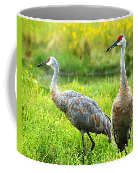 Wildlife Coffee Mug featuring the photograph Sandhill Crains by Michael Peychich
