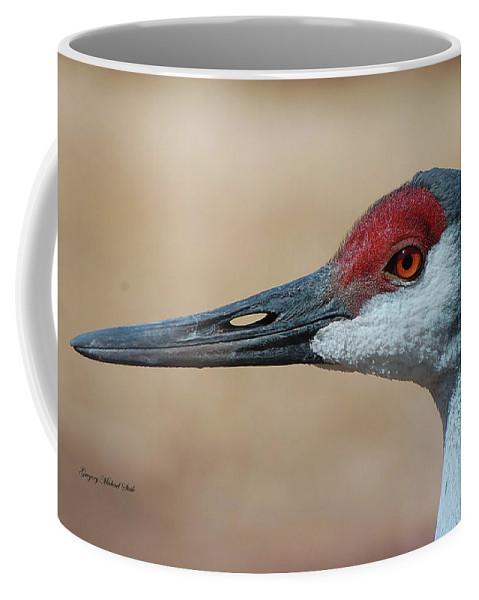 Sandhill Crane Coffee Mug featuring the photograph Sandhill Crane 8 by Safe Haven Photography Northwest
