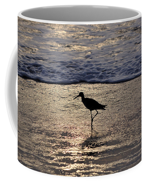 Sandpiper Coffee Mug featuring the photograph Sandpiper On A Golden Beach by Kenneth Albin