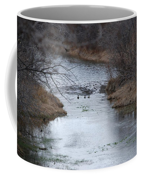Birds Coffee Mug featuring the photograph Sante Fe River by Rob Hans