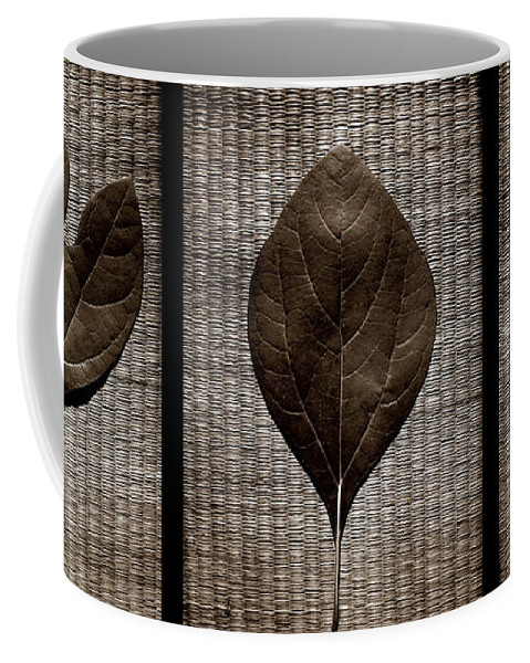 Sassafras Coffee Mug featuring the photograph Sassafras Leaves With Wicker by Michelle Calkins