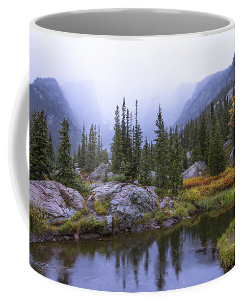 Saturated Forest Coffee Mug featuring the photograph Saturated Forest by Chad Dutson