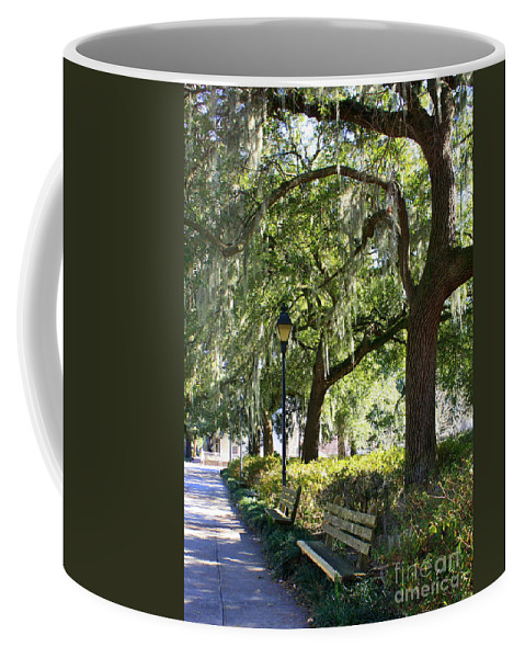 Parks Coffee Mug featuring the photograph Savannah Benches by Carol Groenen