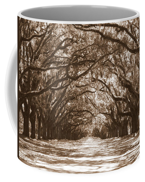 Savannah Coffee Mug featuring the photograph Savannah Sepia - Glorious Oaks by Carol Groenen