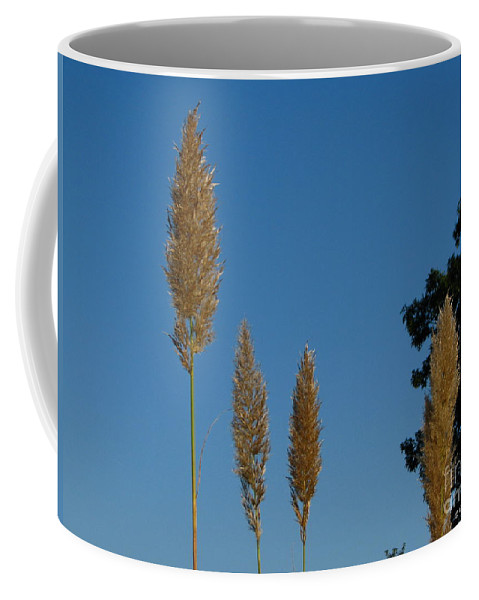 Patzer Coffee Mug featuring the photograph Sawgrass Blooms by Greg Patzer