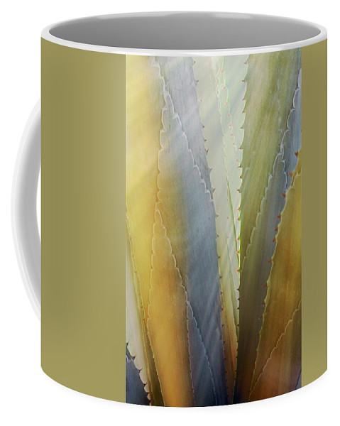 Nature Coffee Mug featuring the photograph Sawtooth Agave Gold Light by Zayne Diamond Photographic
