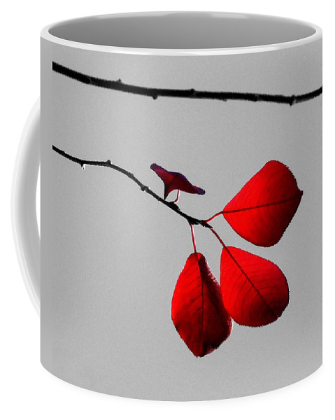 Cherry Tree Leaves Coffee Mug featuring the photograph Scarlet Triad by LeAnne Perry
