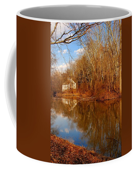 New Jersey Coffee Mug featuring the photograph Scene In The Forest - Allaire State Park by Angie Tirado