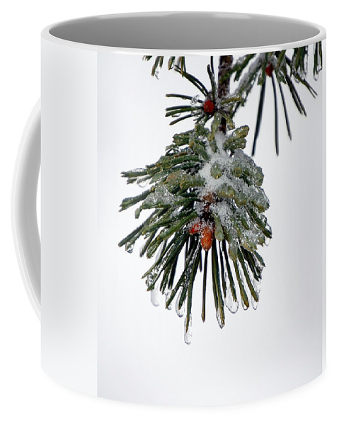 Winter Coffee Mug featuring the photograph Scots Pine And Ice by Lisa Kane