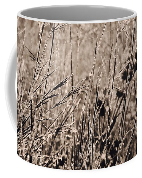 Tiwago Coffee Mug featuring the photograph Scratch Marks by Photography by Tiwago