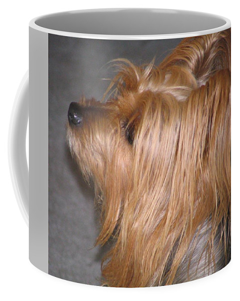 Dogs Coffee Mug featuring the photograph Scruffy by Peggy Holcroft