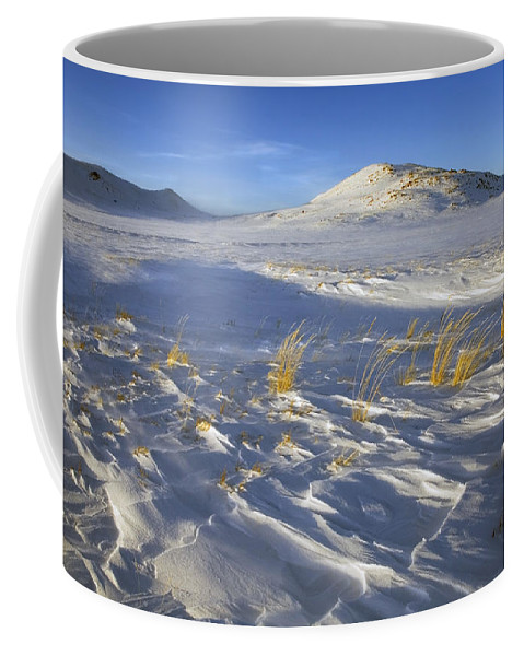 Winter Coffee Mug featuring the photograph Sculpted By The Wind by Mike Dawson