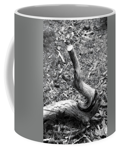 Wood Coffee Mug featuring the photograph Sea Horse by Donna Blackhall