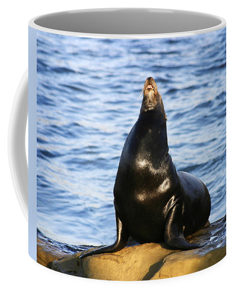 Sea Lion Coffee Mug featuring the photograph Sea Lion Sing by Anthony Jones