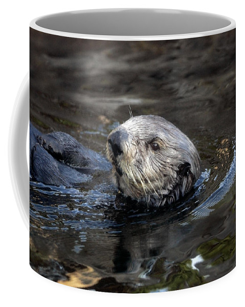 Sea Otter Coffee Mug featuring the photograph Sea Otter by Randall Ingalls