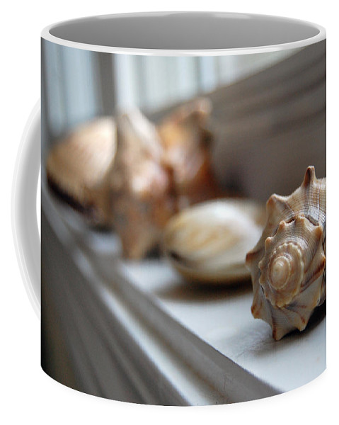 Seashells Coffee Mug featuring the photograph Sea Shells by Robert Meanor
