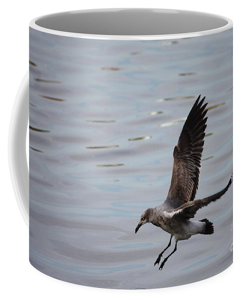 Wildlife Coffee Mug featuring the photograph Seagull Landing by Carol Groenen