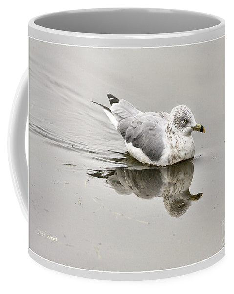 Bird Coffee Mug featuring the photograph Seagull Reflections by Deborah Benoit