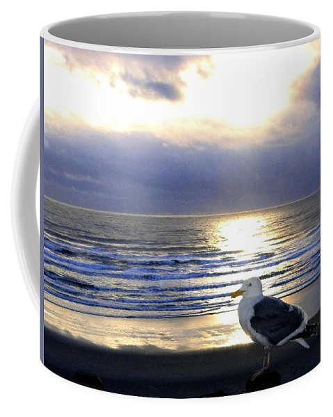 Seagull Coffee Mug featuring the photograph Seagull Sentinel by Will Borden