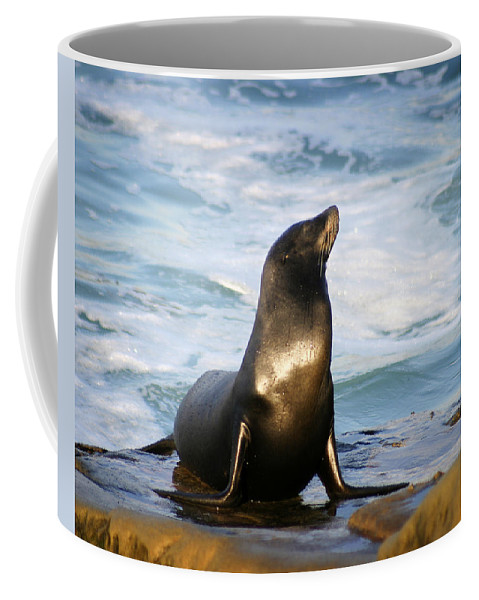 Sealion Coffee Mug featuring the photograph Sealion by Anthony Jones