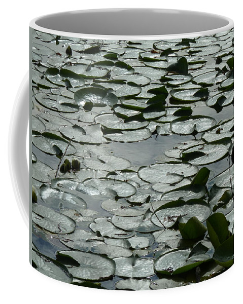 Narural Abstract Coffee Mug featuring the photograph Searching For Prince Frog by Anna Duyunova