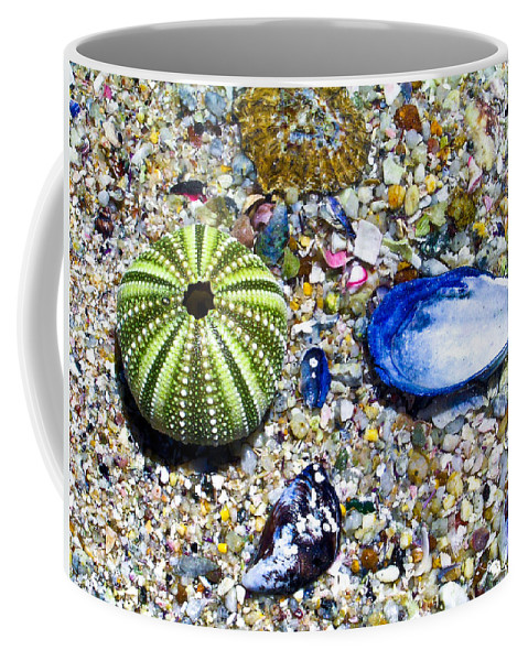 Seashore Coffee Mug featuring the photograph Seashore Colors by Douglas Barnett