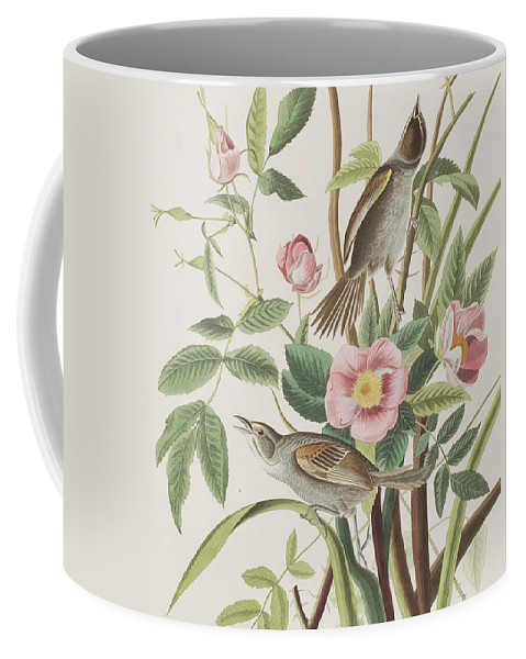 Pink Coffee Mug featuring the painting Seaside Finch by John James Audubon