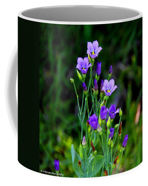 Seaside Gentian Wildflower Coffee Mug featuring the photograph Seaside Gentian Wildflower by Barbara Bowen
