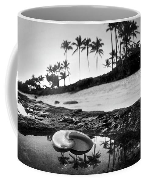 Seaside Treasure Coffee Mug featuring the photograph Seaside Treasure by Sean Davey
