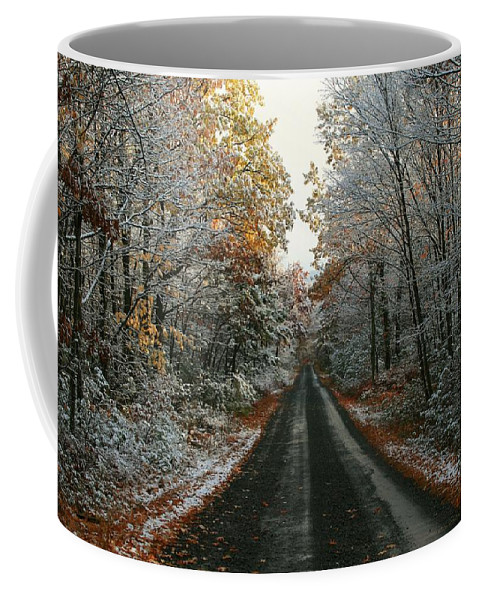 Autumn Coffee Mug featuring the photograph Seasonal Mix by Lori Deiter