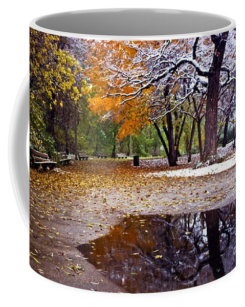 Park Coffee Mug featuring the photograph Seasons Changing by Sven Brogren