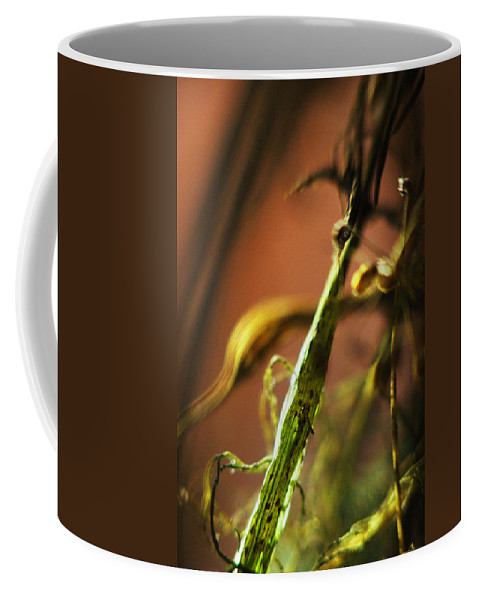 Flowers Coffee Mug featuring the photograph Secret Places... by Arthur Miller