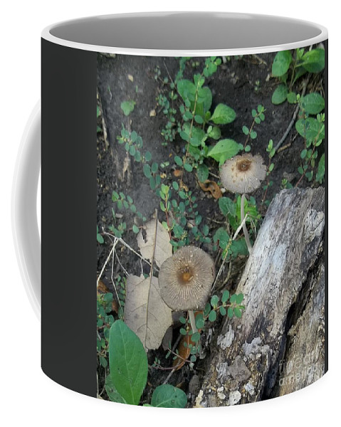 Mushroom Coffee Mug featuring the photograph Seeing Double by Don Hand