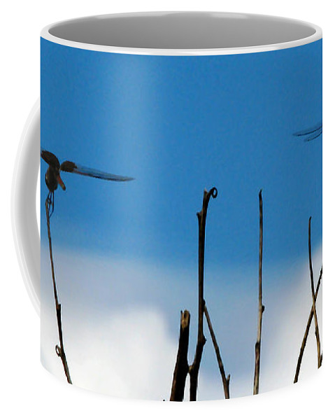 Nature Coffee Mug featuring the photograph Seeing Double by Peg Urban