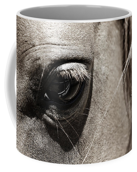 Americana Coffee Mug featuring the photograph Stillness in the Eye of a Horse by Marilyn Hunt