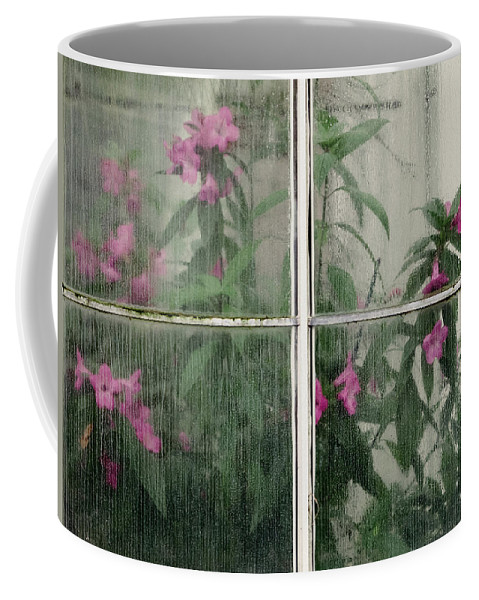 Conservatory. Through Coffee Mug featuring the photograph Seeing Through by Lynn Wohlers