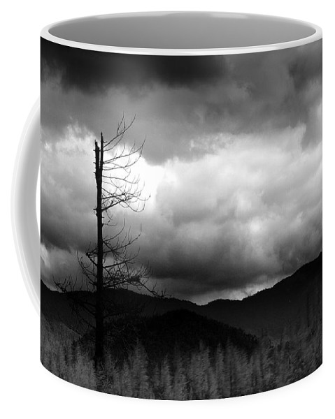 Landscapes Coffee Mug featuring the photograph Seeking New Horizons by Holly Kempe