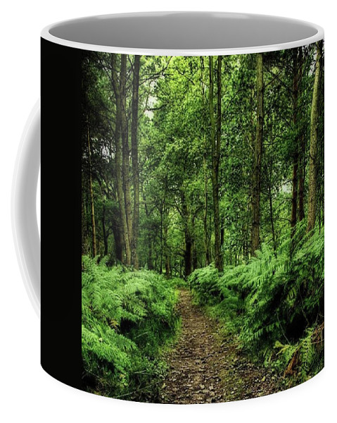 Nature Coffee Mug featuring the photograph Seeswood, Nuneaton by John Edwards