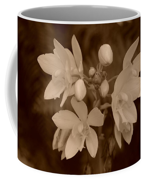Macro Coffee Mug featuring the photograph Sepia Flower by Rob Hans