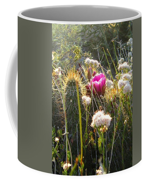 Desert Coffee Mug featuring the photograph Serenity by Nelson Strong